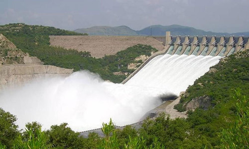 Punjab govt rejects Bahria Town's offer, says will build Dadhocha Dam on its own
